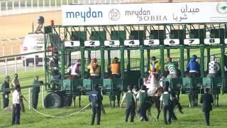 Vidéo de la course PMU AL FAHIDI FORT