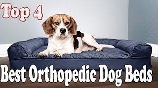 Top 4 Best Orthopedic Dog Beds On Amazon