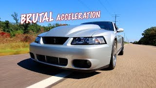 Nick's SAVAGE 750WHP Terminator Cobra Feature *Kenne Bell MAMMOTH* Equipped