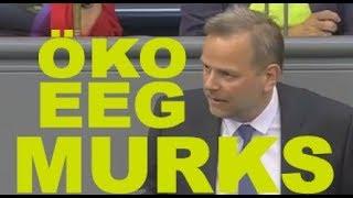 Bundestag: EEG ist pseudo Öko Murks - AFD Leif-Erik Holm