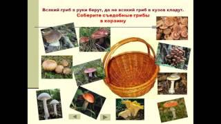 презентация грибы 3 класс