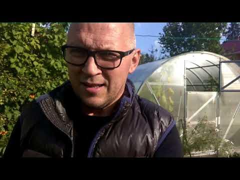 100553 Домик в Луговой с чудесным, ухоженным садом Купить дом Продать недвижимость