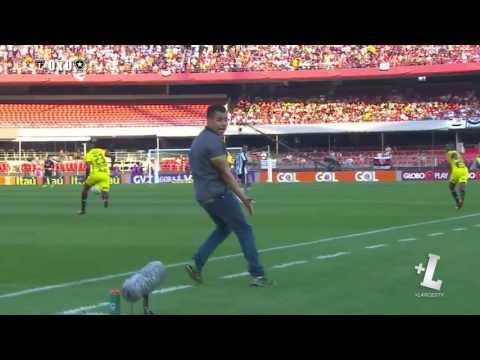 Sao Paulo 0 x 1 Botafogo   Gol & Melhores Momentos   14 08 2016 HD