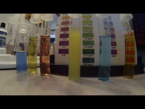 Saltwater Aquarium Water Testing