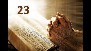 IGREJA UNIDADE DE CRISTO   /  Estudos Sobre Oração 23ª Lição  -  Pr. Rogério Sacadura