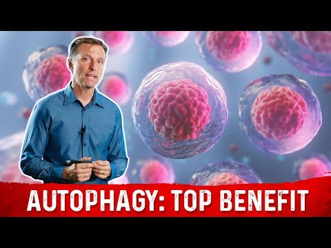 The Most Important Benefit of Autophagy: Will Surprise You