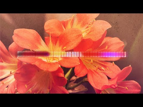 Aeron Aether  Florescence Silk Music