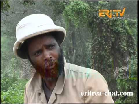 Eritrea Health Care Advert about Malaria   Eritrea TV