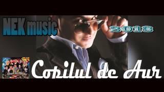 Repeat youtube video COPILUL DE AUR - AM O POZA CU NOI DOI 2013