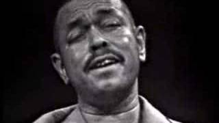 Brownie McGhee - Born and Livin