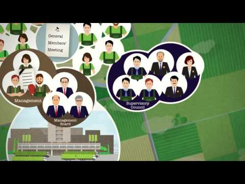 Animation Corporate Governance (English)