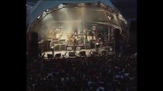 Smashing Pumpkins - Perfect - live at Guggenheim museum song nº  05