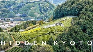 Kyoto Hidden Spots: Japanese Tea Town Wazuka | Kyoto Travel Guide