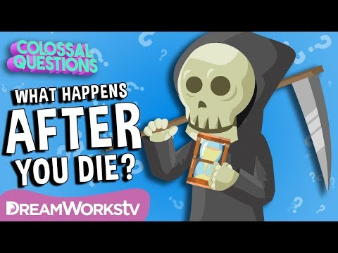 What Happens After You Die?  COLOSSAL QUESTIONS