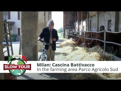 "Green Milan: The ""limousin"" at Cascina Battivacco"