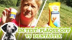 Hunde-Zahnpflege: PlaqueOff VS DentaStix von Pedigree - Vergleichstest