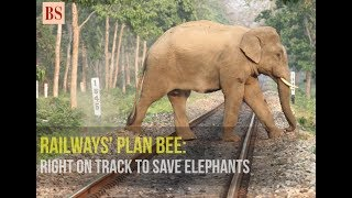 Railways' Plan Bee: Right on track to save elephants