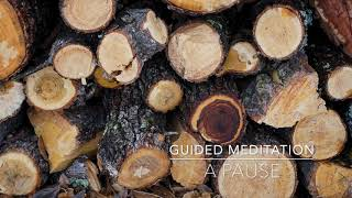 A PAUSE: 3 Minute Guided Meditation | A.G.A.P.E. Wellness