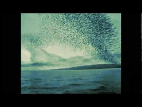 The Smashing Pumpkins - Translucent - Pisces Iscariot Reissue - Sadlands Demo - 2012 Mix