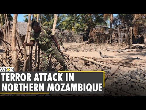 Mozambique: Dozens killed in terror attack by 'Islamic state linked terrorists' | World Latest News