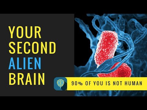 """Your Second """"Alien"""" Brain - How Your Microbiome Affects Your Health"""