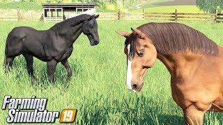 Kupiłem konie - Farming Simulator 19 | #17