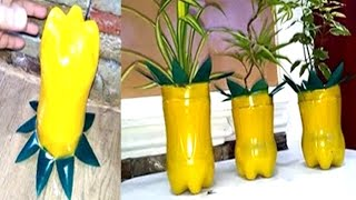How to Turn your Plastic Bottles Into Decorative Pots for Plants