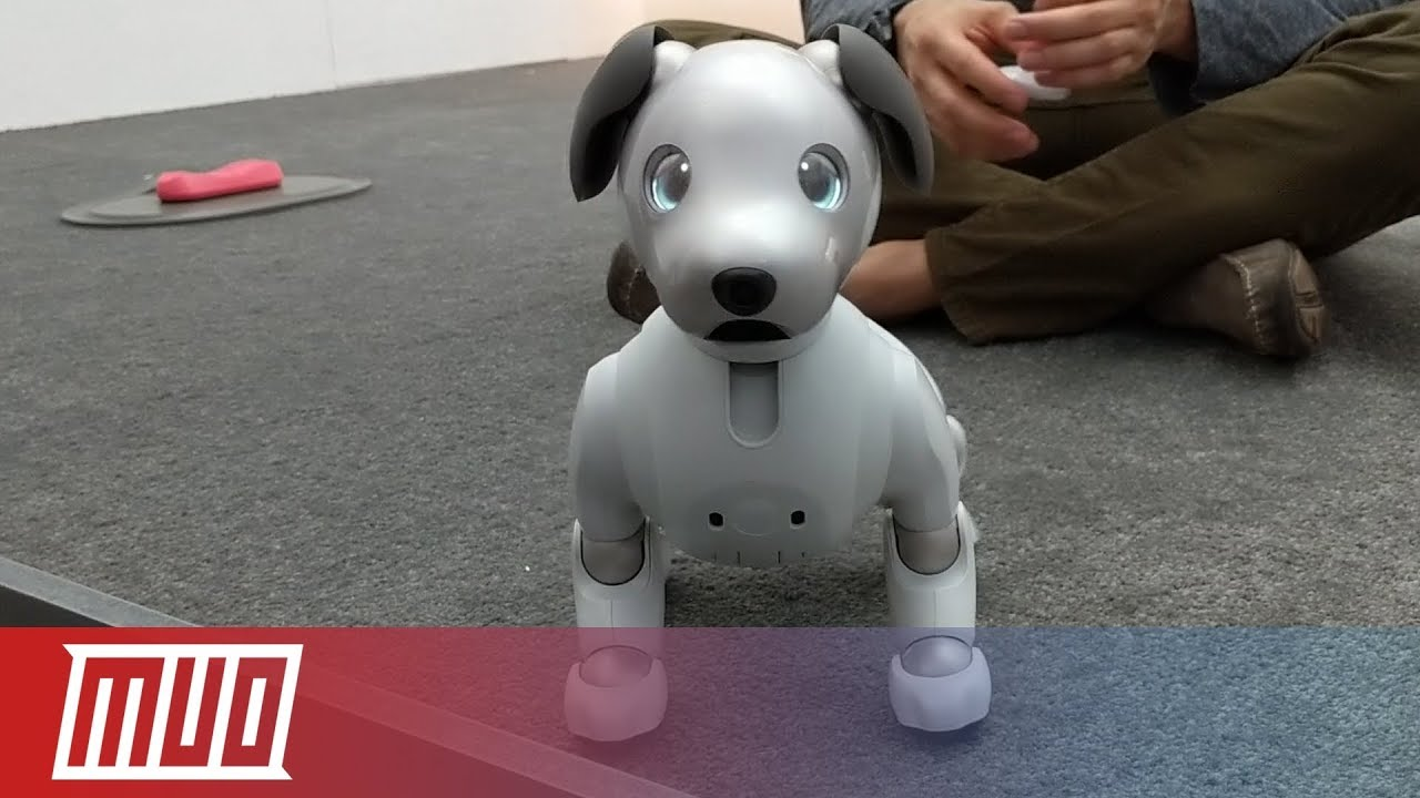 Download MUO at CES Day 2: Shaq O'Neal, Smart Doorbells & Robot Dogs