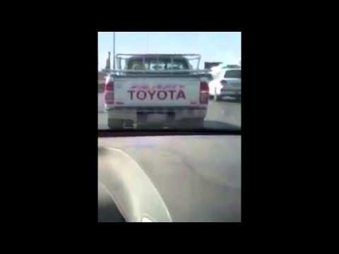 خليجي يكاد ينهار بسبب ما كتبه مصري على سيارته