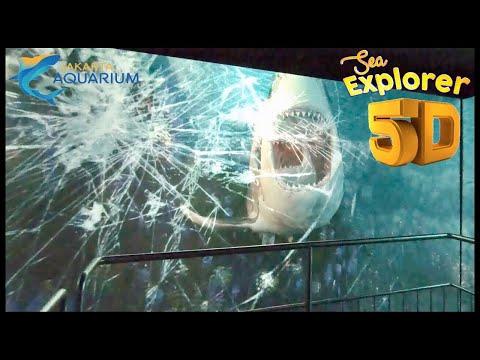 Nonton Theater Simulator 5D Di Jakarta Aquarium Pulangnya Lewatin Toko Souvenir Lucu-Lucu