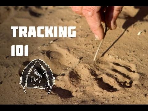 Tracking 101- Black Scout Tutorials