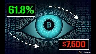 Bitcoin | Long Term Prediction | The Golden Retrace