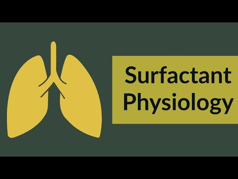 Surfactant | Physiology Review - 200 MCQ , 2016
