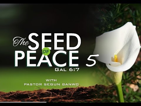 Dew of Heaven Service - The Seed of Peace Part 5 (Gal. 6:7)- 17th SEPT 2017.