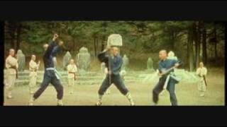 south shaolin vs north shaolin 1