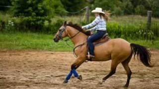 cowgirls don t cry horses