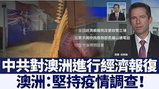 中共進行經濟報復 澳洲:堅持疫情調查 新唐人亞太電視 20200515