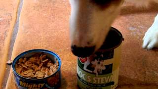 Holiday Holistic Pet Food, Human Grade Food Made In Usda Kitchens