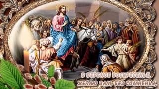 С вербным Воскресеньем  Вас