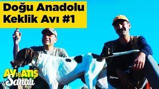 Doğu Anadolu Keklik Avı 1 Av Ve Atış Sanatı Yaban Tv