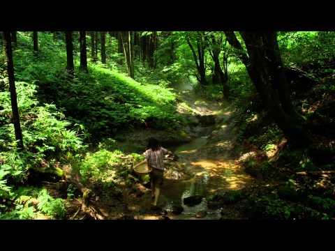 Trailer do filme Little Forest: Summer/Autumn
