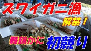 【舞鶴かに】ズワイガニ漁解禁!初競りの様子  Japanese snow crab competition