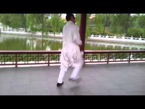 Xiang Zishi Wudang Xuanwu Quan In Summer Palace 向资师 玄武拳