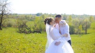 Дмитрий и Надежда (Свадебный клип)