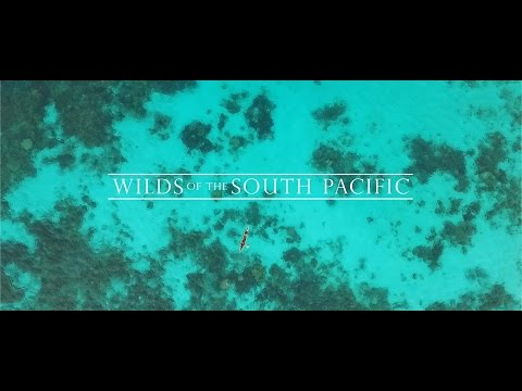 Wilds of the South Pacific