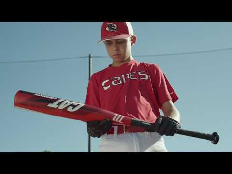 20 Best Youth Baseball Bats 2019 for USA Youth, JBB & SL (YBB)