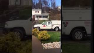 Orkin Pest Control Staff Review