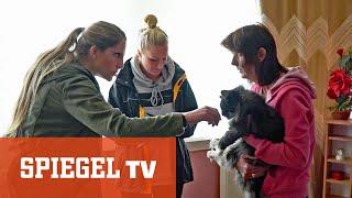 Die Tier-Retterinnen: Wenn Hund und Katz in Not sind