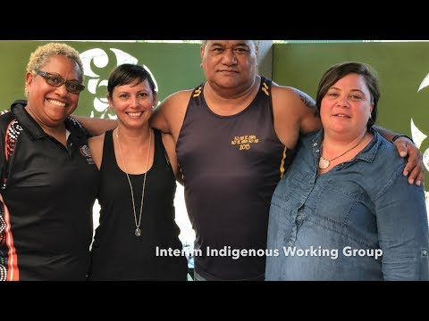 Interim Indigenous Working Group for the World Federation of Public Health Associations