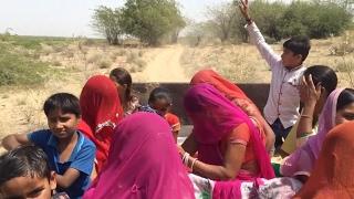 new Rajasthani desi video, New Marwadi  असली विडियो, shitla mata mela live video ,Rajasthani culture